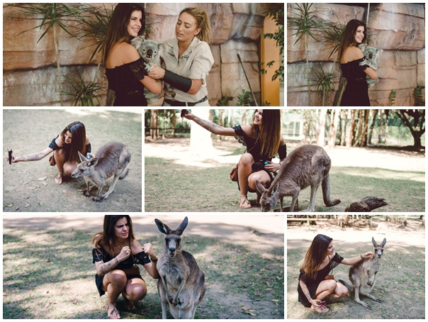 Plaquette selfies animaux wallaby koala australie